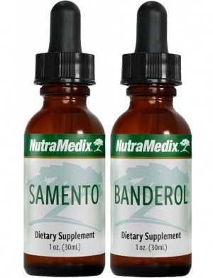 Samento und Banderol - ein ideales Paar bei Borreliose